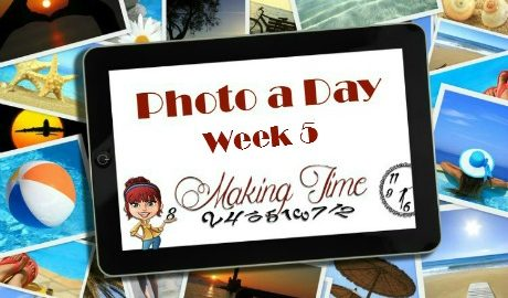 Photo a Day: Week 5 #photoadayforayear #photoaday